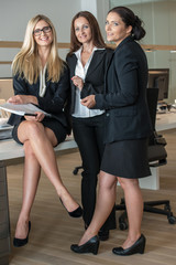 Three Businesswomen In Office Working On A Document