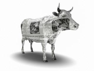 Cow_002