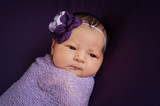 Fototapety Newborn Baby Girl in Lavender and Purple