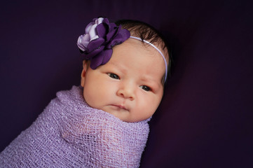 Newborn Baby Girl in Lavender and Purple