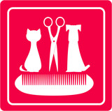 Fototapety grooming barbershop for pet with dog, cat scissors and comb