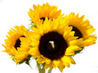 Sunflowers with an inset Diamond Ring