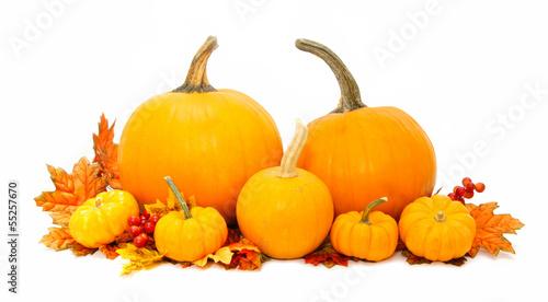 Arrangement of pumpkins with autumn leaves