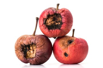Three old and rotten apples on white background