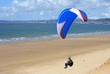 paraglider - 55260401