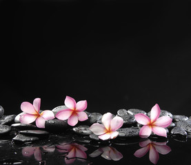 Stone spa and healthcare concept-frangipani and black pebbles