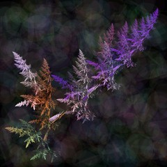 Fractal colorful fern leaves