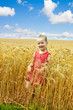 Child in wheat field.