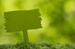 grüne Holztafel mit Textfreiraum