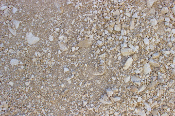 rock texture background 2