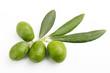 Olive verdi e foglie