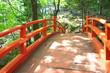 Red bridge in Japanese style