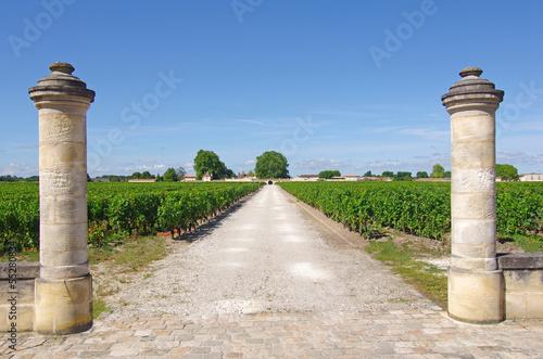 Papiers peints Europe Méditérranéenne Entrée d'une propriété viticole du Médoc (Gironde)