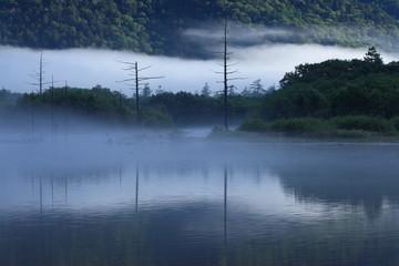 朝霧の上高地大正池