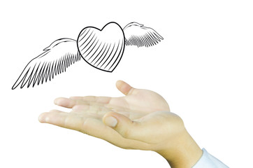 Heart with angel wing on Human hand
