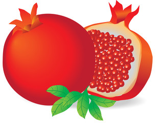 pomegranate-vector, shana tova