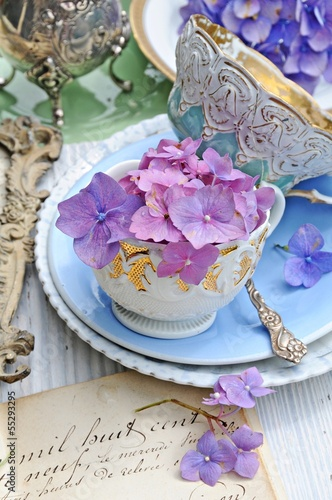 Papiers peints Hortensia Hortensien und antikes Porzellan