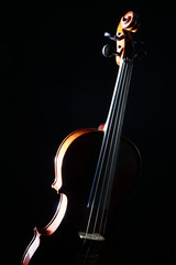 Violin isolated on black