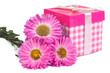 a bouquet of asters and pink gift box with bow isolated