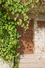 Door of a traditional house with climbing plants
