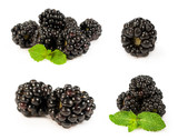 set blackberries close-up