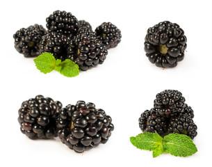 set blackberries close-up
