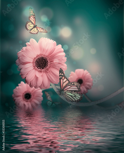 In de dag Gerbera Floral background, gerbery in the rays of light and butterfly