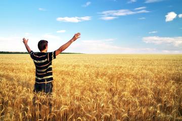 Man in meadow of golden wheat. Emotional scene.