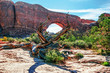 Sunny day in Arches Canyon
