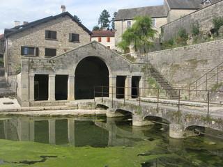 Source de la Romaine à Fondremand 1