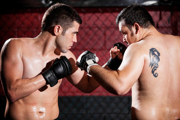 Mixed martial arts fighters