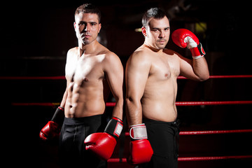 Male boxers ready to fight