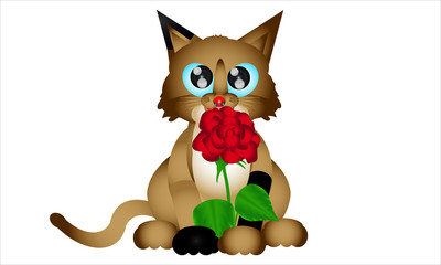 Animal. Cat With Rose. Romantic Cat