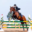 Equestrian sport competitions.