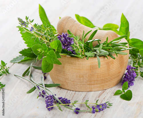 Mortar with  herbs - 55313417