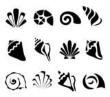 Fototapety Abstract shell symbol set