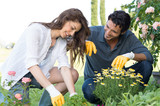 Couple Planting Plant In Garden