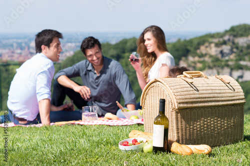 Summer Picnic with Friends - 55315608