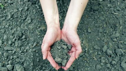 Plowed land in hands