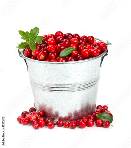 cowberries in a bucket isolated on white