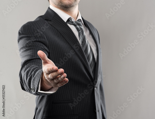 Businessman shaking hand of his business partner in agreement