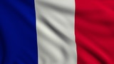 Flag of France looping