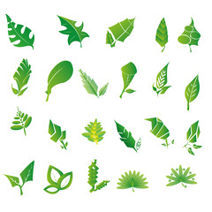 Vector Stylish Abstract Green Leaf Icon Set