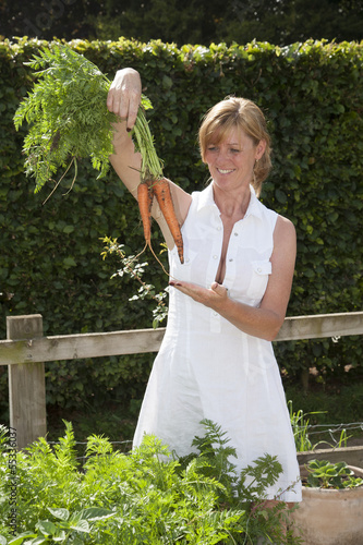 Vegetable garden woman pulling carrots