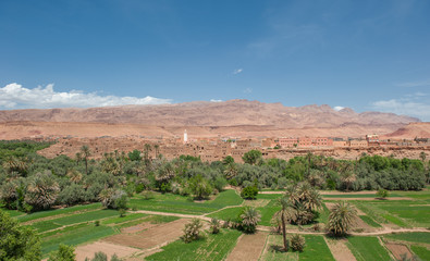 Berber kasbah in Todra gorge, Morocco
