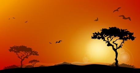 Landschaft Wüste