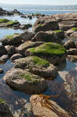 cile - spiaggia de algarrobo
