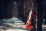 Cello outdoors