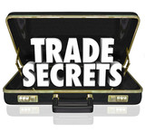 Trade Secrets Briefcase Business Proprietary Information Intelle