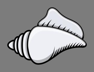 Conch Seashell - Vector Illustration
